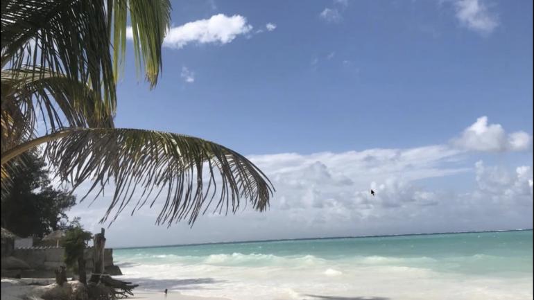 Sansibar – 4 Wochen vor Ort ein Live Reise-Travel & Work-Erlebnisbericht